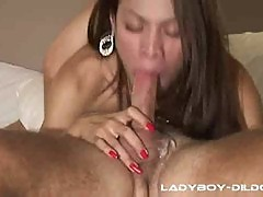 Asian Ladyboy Sucking