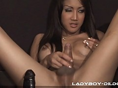 Horny Ladyboys Playing with Big Dildos